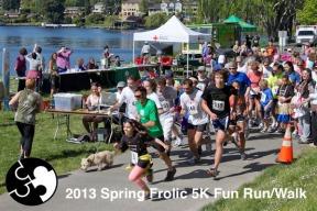 large_spring-frolic