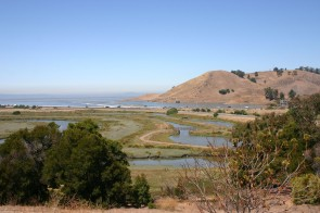 Salt_marsh,_Coyote_Hills