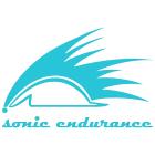 Sonic-Endurance