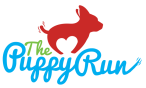 puppy_run_color-640x387