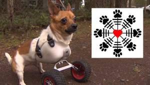 valhalla_dogs_logo